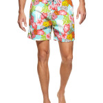 Vilebrequin Moorea Swim Trunks