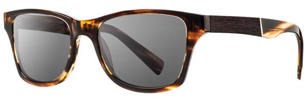 shwood sunglasses fifty fifty canby tortoise ebony