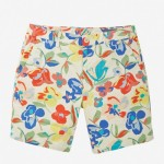 Limited Edition Men's Shorts